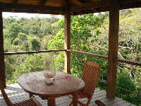 house with swimming pool for rent in Montezuma - Costa Rica