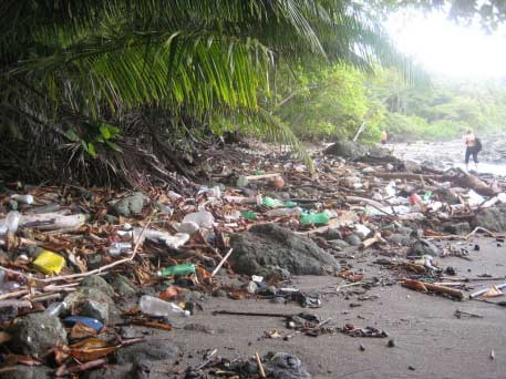 Costa Rica Beach Trash