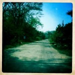 Dusty Road of Santa Teresa