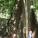 Andrea Drost with huge ceiba tree in the hills of Santa Teresa