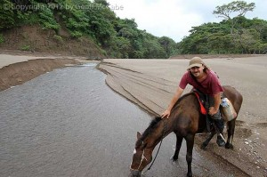 El Pinto, the best horseback tours in the southern nicoyal peninsula