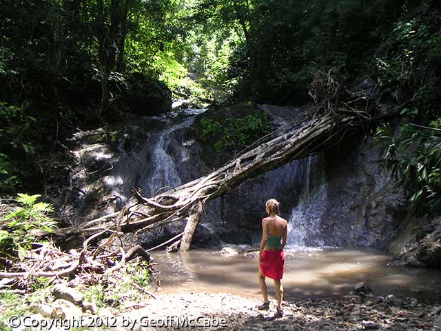 Hike up any stream and you'll probably find a waterfall