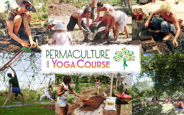 Permaculture and Yoga Program